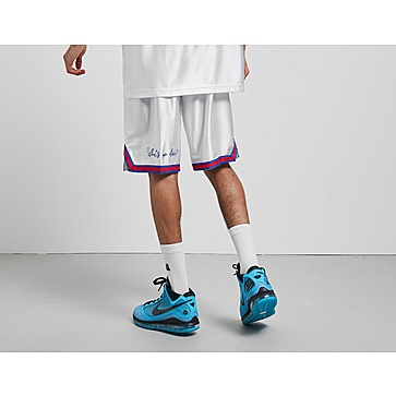 Nike LeBron x Tune Squad DNA Shorts QS