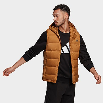 adidas Helionic Hooded Down Vest