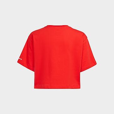 adidas Originals Adicolor Cropped T-Shirt