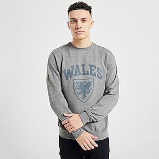 Official Team sudadera selección de Gales