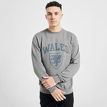 Official Team Sweat-shirt Pays de Galles Crew Homme