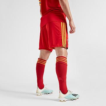 adidas Wales 2020 Home Socks Heren