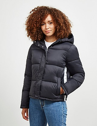 Calvin Jackets for Women, compare